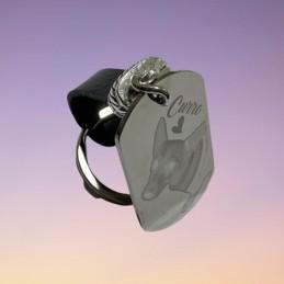 Llavero de acero inoxidable con fotograbado y nombre montado en cuero