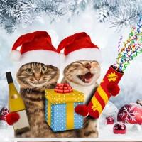 Taza Navidad